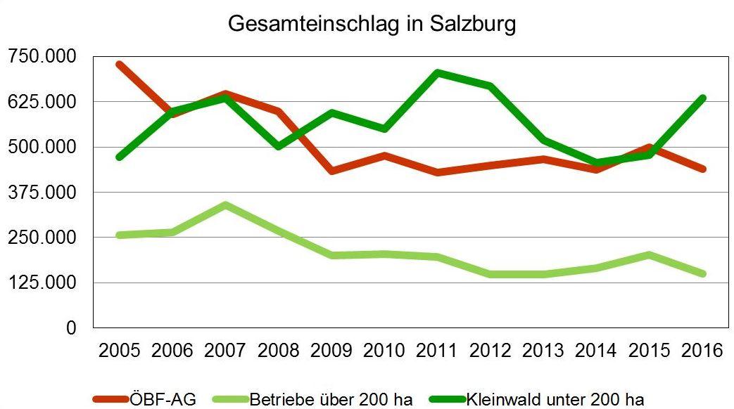 Kleinwald gegen Trend
